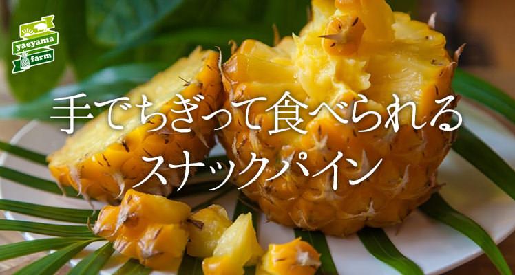 オーガニックパイナップル・ボゴール種