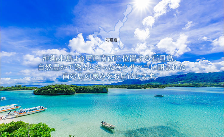 石垣島のギフト