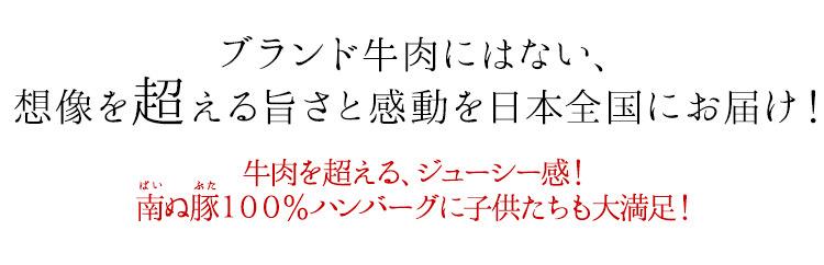 ブランド牛肉にはない、想像を超える旨さと感動を日本全国にお届け! 牛肉を超える、ジューシー感! 南ぬ豚100%ハンバーグに子供たちも大満足!