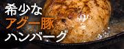 南ぬ豚ハンバーグ