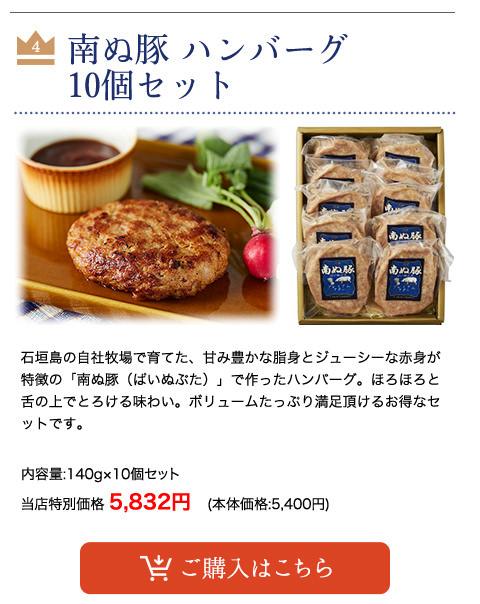 【父の日】 南ぬ豚 ハンバーグ 10個セット