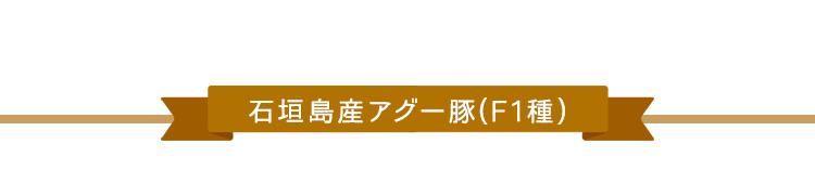 石垣島産アグー豚(F1種)