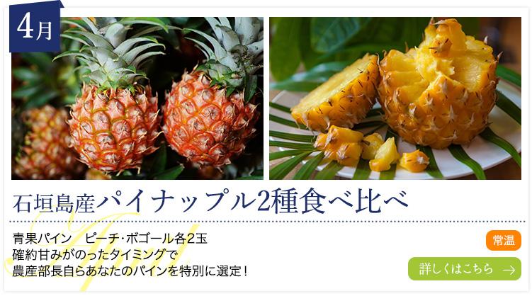 4月:石垣島産パイナップル2種食べ比べ
