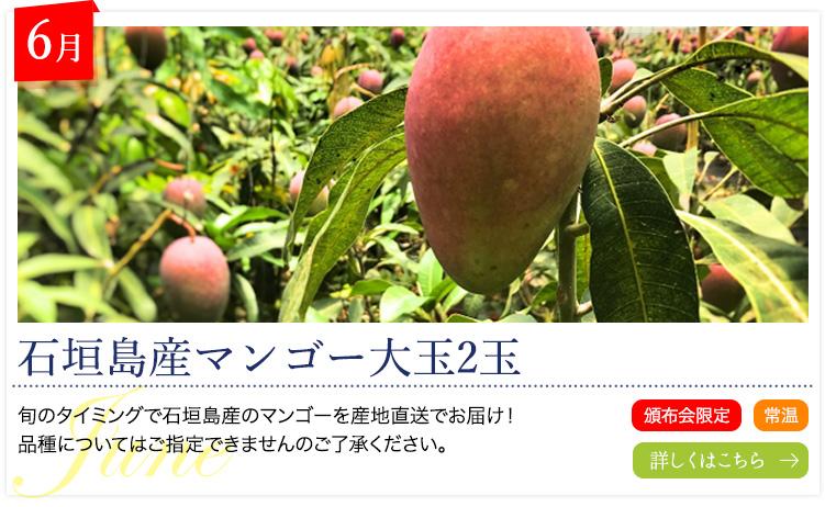 6月:石垣島産マンゴー大玉2玉