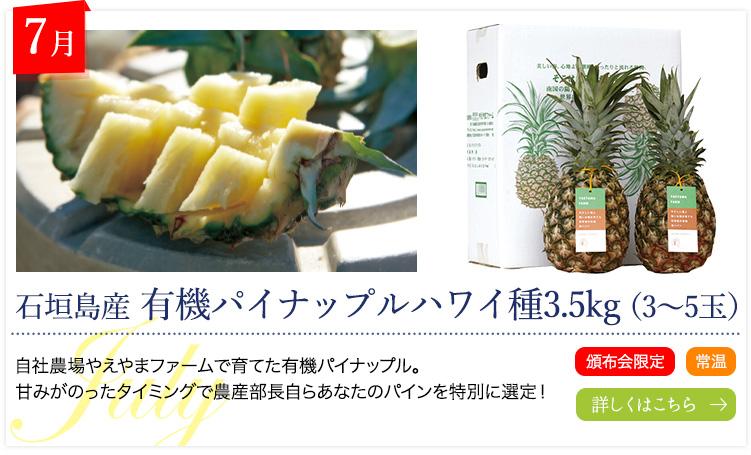7月:石垣島産 有機パイナップルハワイ種3.5kg(3~5玉)