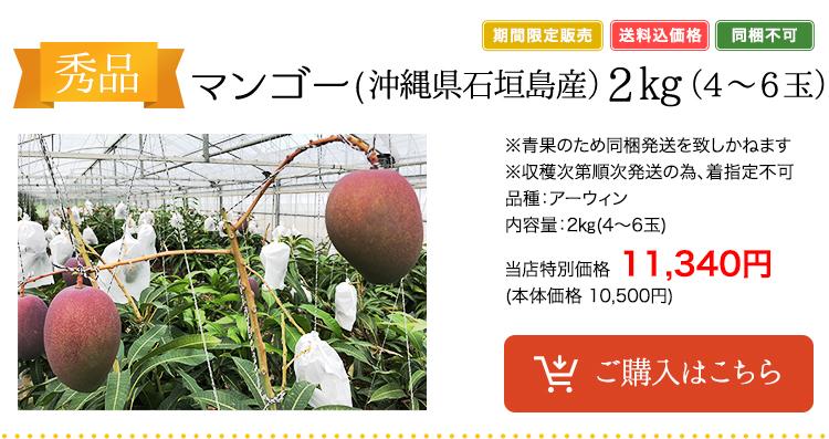マンゴー(沖縄県石垣島産)2㎏(4~6玉)