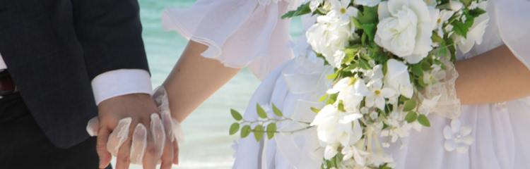 やえやまファーム 結婚内祝い