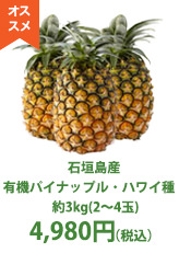 石垣島産 有機パイナップル・ハワイ種 約3kg(2〜4玉)