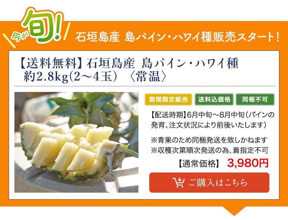 【送料無料】石垣島産 島パイン・ハワイ種 約2.8kg(2~4玉) 〈常温〉