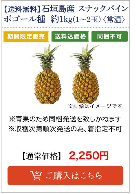 石垣島産 スナックパイン ボゴール種 約1.0kg(1〜2玉)〈常温〉