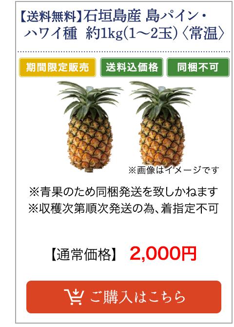 石垣島産 島パイン・ハワイ種 約1.0kg(1〜2玉)〈常温〉