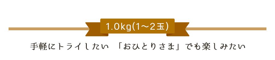 1.0kg(1〜2玉)