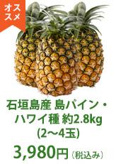 南ぬ牛 特選 モモすき焼き 400g
